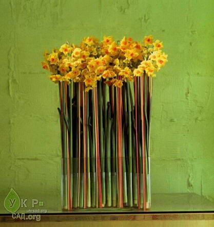 Креативная флористика