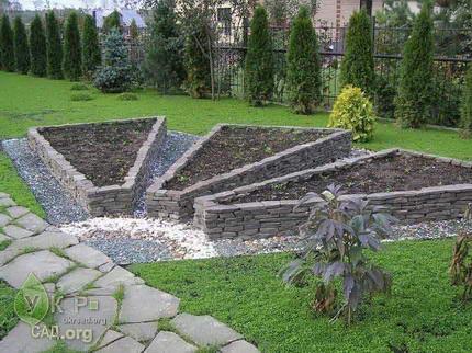 Декоративный огород, грядка