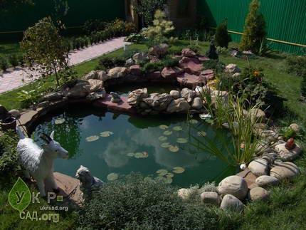 Декоративный водоем, пруд в саду