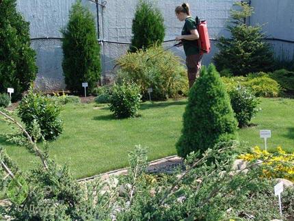 Услуги садовника, уход за садом