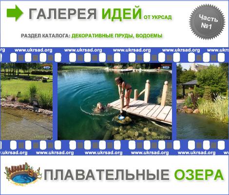 Пленка для пруда Бутилкаучуковая пленка Гидроизоляция прудов и водоемов Пленка ПВХ для пруда Пленка для бассейна